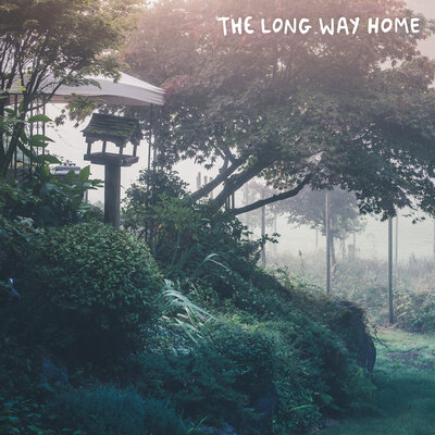 Song cover: Powfu - the long way home