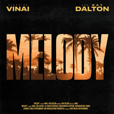 Song cover: VINAI - Melody