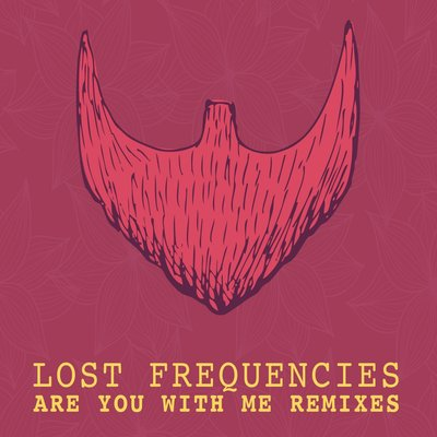 Song cover: Lost Frequencies - Are You with Me